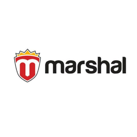 Разработка логотипа и сайта Marshal